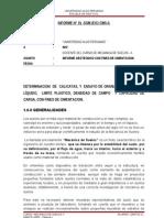 INFORME-SUELOS-II.doc