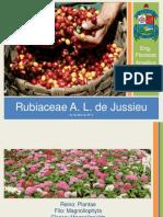 Apresentação1 - Rubiaceae