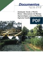 Adubação Verde e Plantio