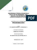 Portafolio Programacion i 2013