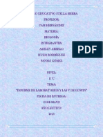 Informe de Las Uves