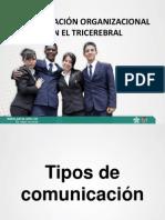COMUNICACIÓN ORGANIZACIONAL CON EL TRICEREBRAL