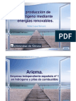 6 - Ariema