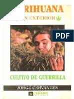 Marihuana en Exterior Cultivo de Guerrilla