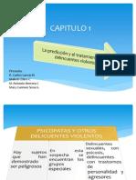 CAPITULO 1 Criminologia de Camp. (1)