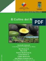 Cultivo del palto Inia Chile.pdf