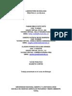 Reyes, Soto, Siculaba, Laboratorio 3-6 Biologia