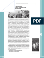 P_2008GuiaRiesgosQuimicosModelos.pdf