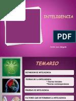 Inteligencia PDF