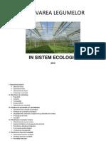 81238805 1 Plan de Afaceri Cultivarea Legumelor in Sistem Ecologic
