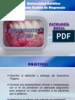 Granuloma Piogeno Terminado