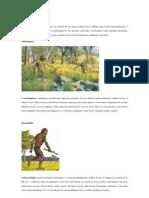 5 etapas da evolução humana.docx