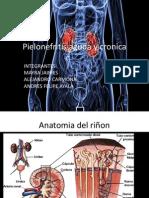 Pielonefritis Aguda y Cronica