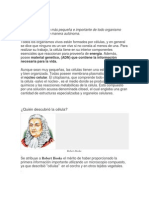 Disertacion Ciencias