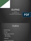 Burns Presentation
