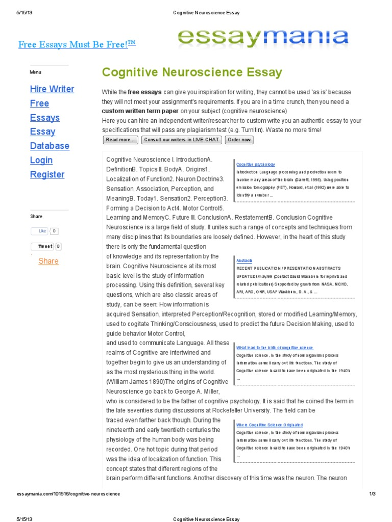 neuroscience essay