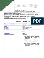 Proiect Metoda Cubului