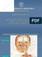 5.2 Anatomía descriptiva y radiológica de la serie de SPN y técnica radiológica.