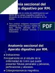 6.5 Imagen Seccional Del Aparato Digestivo Por RM.