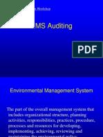21 Em Straining Auditing