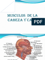 MUSCULOS  DE LA CABEZA Y CARA MAY.pptx