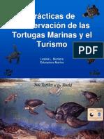 Practicas de Conservación de las tortugas marinas  y el turismo