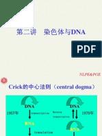 第二讲 染色体与DNA