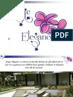 Magic Elegance Ppt