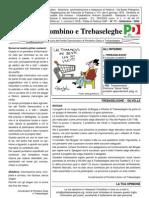 Giornale PD Piombino Trebaseleghe 2008 N.1