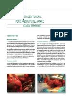 patologia trompa de falopio.docx