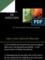 Cadena de Infeccion