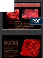Anemia Megaloblastica Final