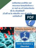 Bioquímica Seminario 6