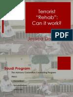 Terrorist Rehab