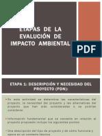 ETAPAS  DE  LA  EVALUCIÓN  DE  IMPACTO  AMBIENTAL