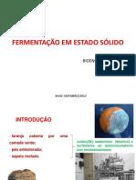 FERMENTAÇÃO EM ESTADO SÓLIDO09102012
