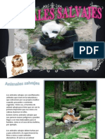 animalessalvajes-111001175638-phpapp01
