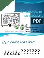 repasoeintegracionderutasmetabolicas-121114225700-phpapp02