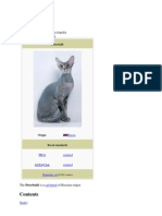 Cat Peterbald