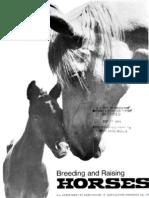 Breeding and Raising Horses