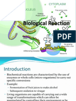 2.0 - Biological Reaction