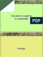 Ammoniti_parte1