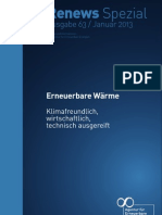 63 Renews Spezial Erneuerbare Waerme Online 01