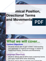 Anatomical_Positions_Movements.pptx