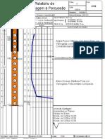 Relatório parcial da sondagem da cotral Fundações leopoldina
