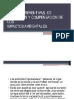 medidas correctivas preventivas mitigacion.pdf