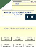 122952492 Norm Essur Les Constit u Ants
