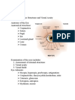Assessing the Eye Structures and Visual Acuity