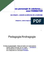 Despre Invatare La Adulti 2008(Final)