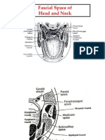 Fascial Space Of
